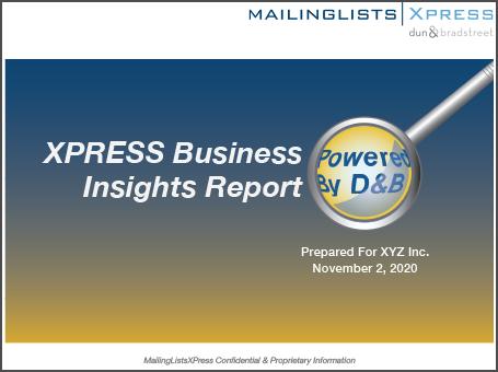 XBIR Sample Report